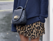 Blue and leopard 1