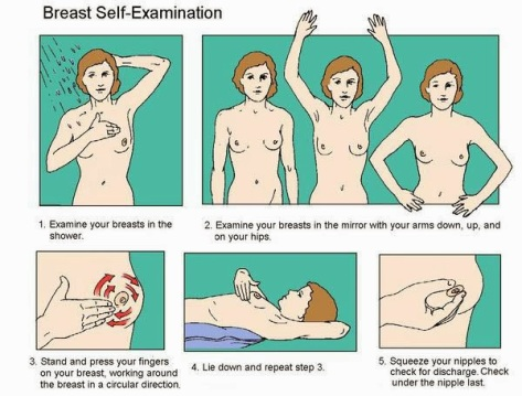 Breast_self_exam autoexame mama auto exame