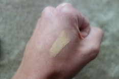 shiseido stick concealer, review